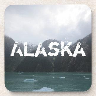Endicott Arm Fjord Coasters