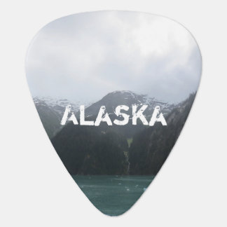 Endicott Arm Fjord Guitar Pick