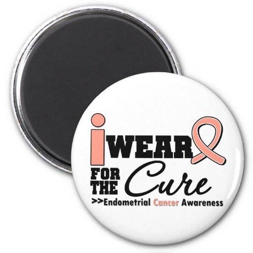 Endometrial Cancer I Wear Peach Ribbon For a Cure Magnet