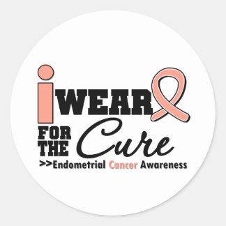 Endometrial Cancer I Wear Peach Ribbon For a Cure Round Sticker