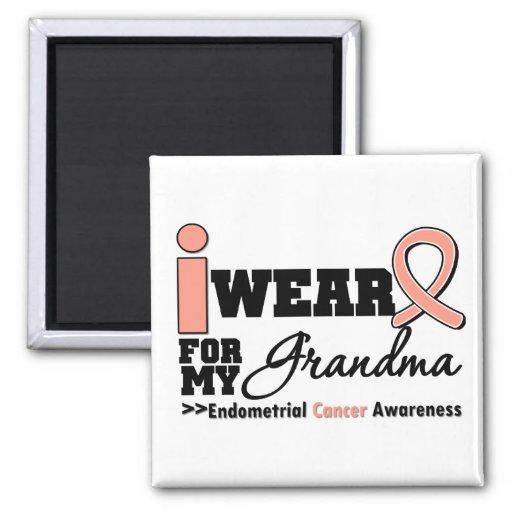 Endometrial Cancer I Wear Peach Ribbon For Grandma Refrigerator Magnets