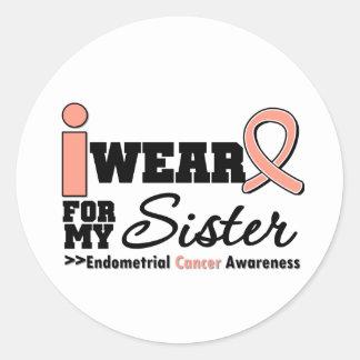 Endometrial Cancer I Wear Peach Ribbon For My Sist Round Sticker