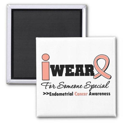 Endometrial Cancer I Wear Peach Ribbon For Someone Magnet