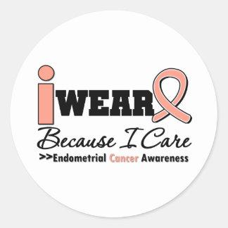 Endometrial Cancer Peach Ribbon Because I Care Round Sticker