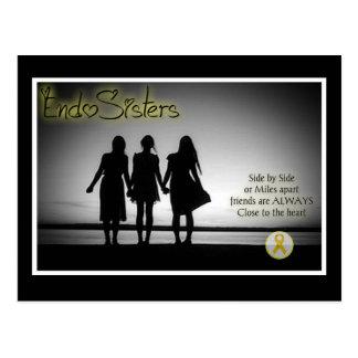 EndoSistersFrienship Postcard