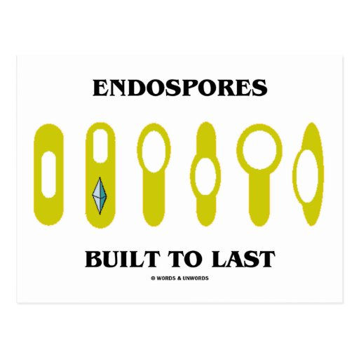 Endospores Built To Last (Bacterial Attitude) Postcard