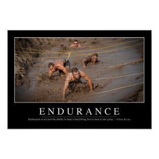 Endurance: Inspirational Quote Poster