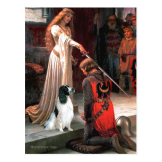 Engilsh Springer 7 - The Accolade Postcard