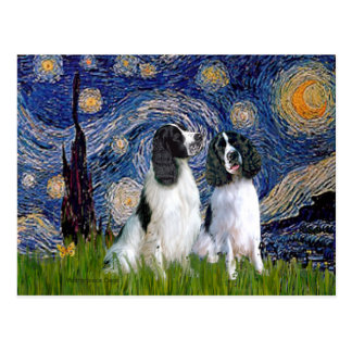 Engilsh Springer Pair - Starry Night Postcard