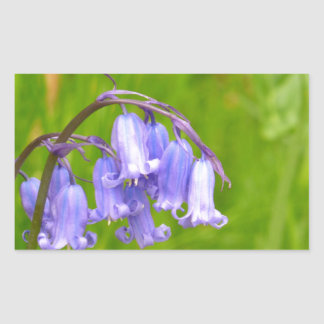 English Bluebell Flower Sticker