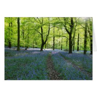English Bluebells Card