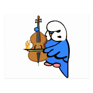 English Budgie Plays Bass Cello Postcard