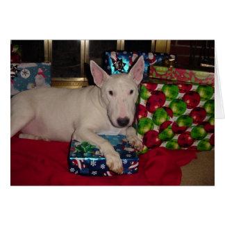 english bull terrier christmas present fireplace card