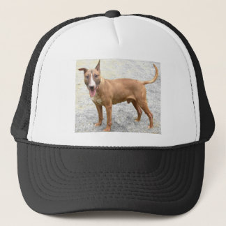 English Bull Terrier Hat Baseball Cap