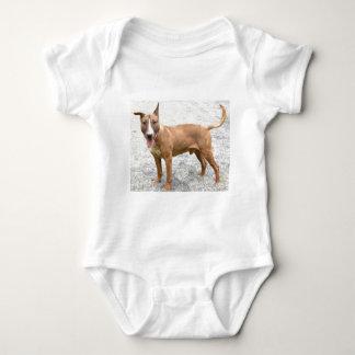 English Bull Terrier Infants Baby Shirts