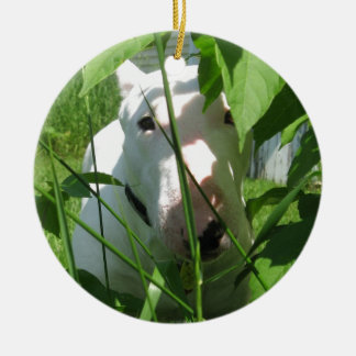 English Bull Terrier Peeking Through the Leaves Christmas Ornament