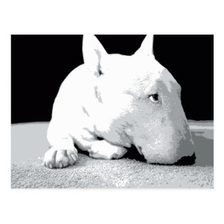 English Bull Terrier, Pop Art Print Postcard