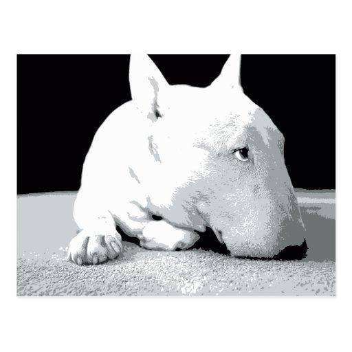 English Bull Terrier, Pop Art Print Postcards