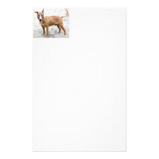 English Bull Terrier Stationary Customised Stationery
