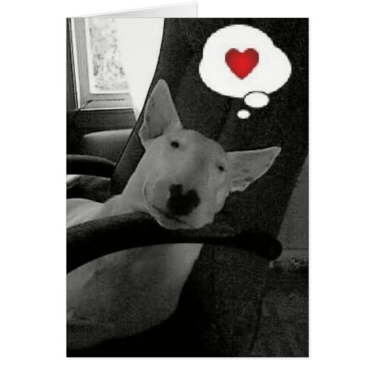 english bull terrier valentine card