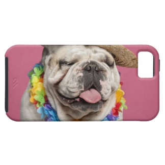 English Bulldog (18 months old) wearing a straw iPhone 5 Cases