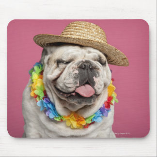 English Bulldog (18 months old) wearing a straw Mouse Mat