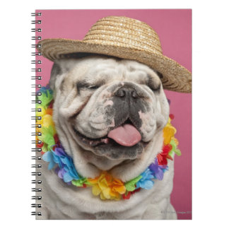 English Bulldog (18 months old) wearing a straw Notebook