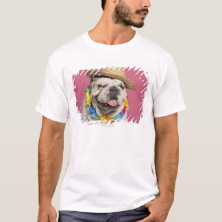 English Bulldog (18 months old) wearing a straw T-Shirt
