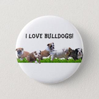 English Bulldog 6 Cm Round Badge