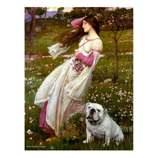 English Bulldog 9 - Windflowers Postcard