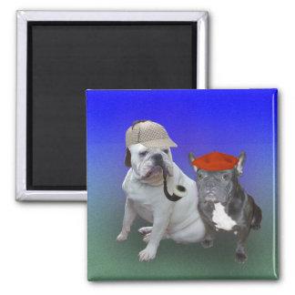 English bulldog and French bulldog Square Magnet