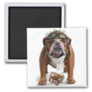 English bulldog Aviator Magnet