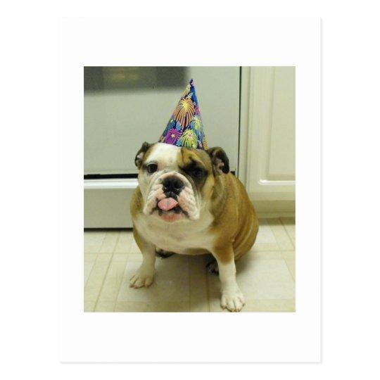 English Bulldog Birthday Postcard