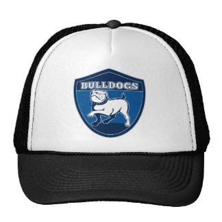 English bulldog british rugby sports team mascot mesh hats
