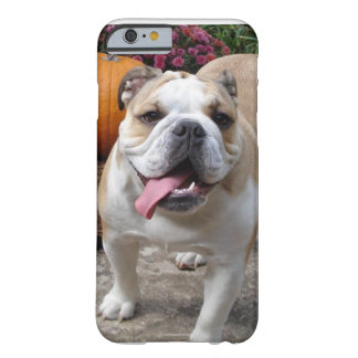English Bulldog Cute Funny iPhone 6 case covers ca