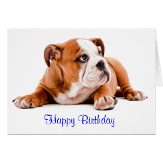 English Bulldog Happy Birthday Card - Verse inside