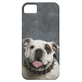 English Bulldog iPhone 5/5S, Barely There Case iPhone 5 Cases