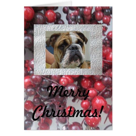 English bulldog Merry Christmas cards, cute! Card