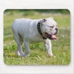 English Bulldog Mouse Pad