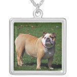 English bulldog necklace, gift idea