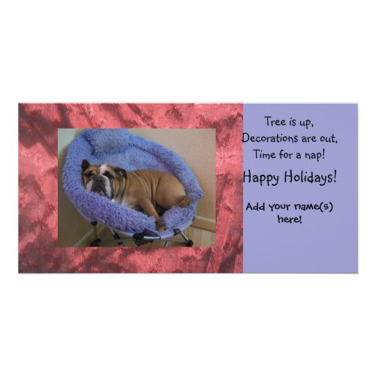 English Bulldog Photo Christmas Holiday Cards
