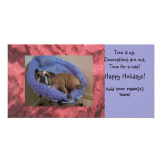 English Bulldog Photo Christmas Holiday Cards Photo Cards