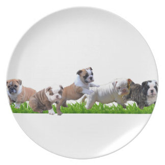 English Bulldog Plate