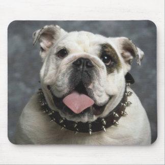 English Bulldog Portrait Mouse Pad