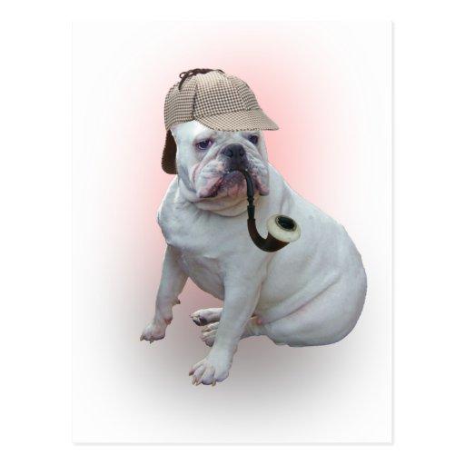 English Bulldog Postcards