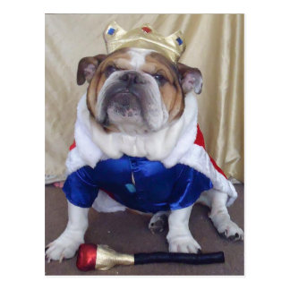 English Bulldog Postcards