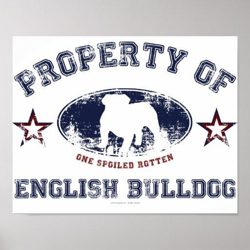 English Bulldog Print