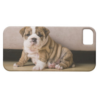 English bulldog puppies barely there iPhone 5 case