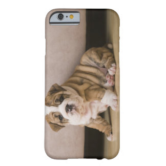 English bulldog puppies barely there iPhone 6 case
