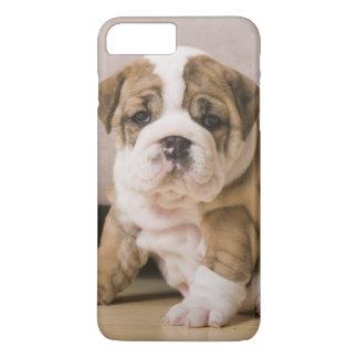 English bulldog puppies iPhone 8 plus/7 plus case